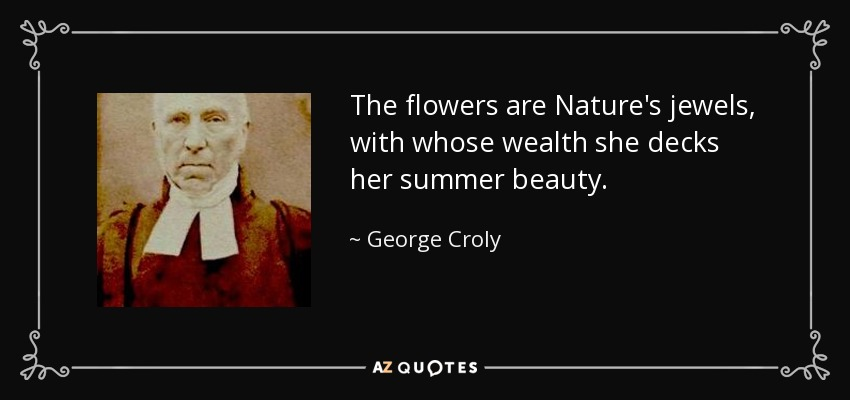 The flowers are Nature's jewels, with whose wealth she decks her summer beauty. - George Croly