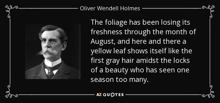 The foliage has been losing its freshness through the month of August, and here and there a yellow leaf shows itself like the first gray hair amidst the locks of a beauty who has seen one season too many. - Oliver Wendell Holmes, Jr.