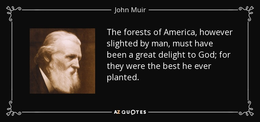 The forests of America, however slighted by man, must have been a great delight to God; for they were the best he ever planted. - John Muir