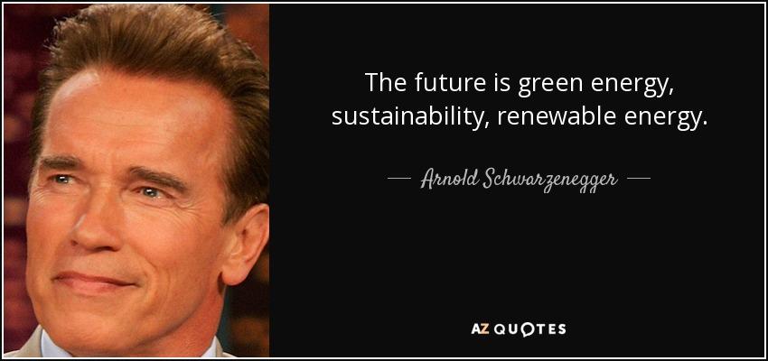 The future is green energy, sustainability, renewable energy. - Arnold Schwarzenegger