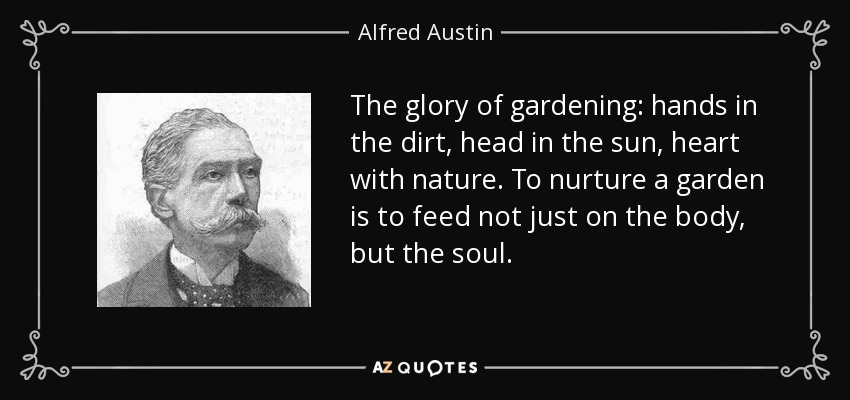 The glory of gardening: hands in the dirt, head in the sun, heart with nature. To nurture a garden is to feed not just on the body, but the soul. - Alfred Austin