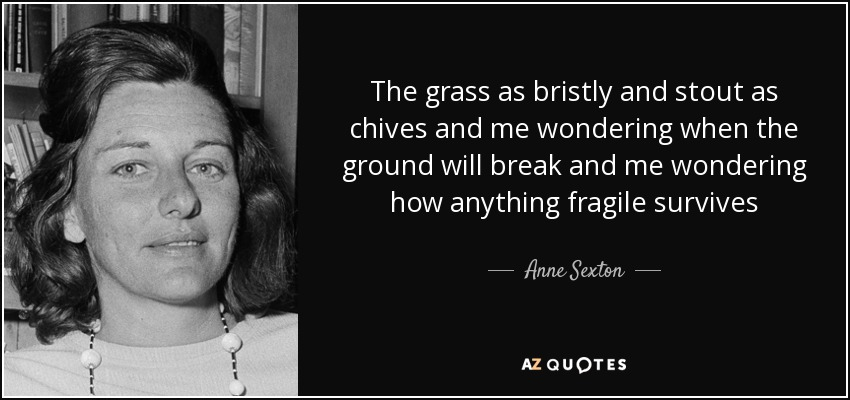 The grass as bristly and stout as chives and me wondering when the ground will break and me wondering how anything fragile survives - Anne Sexton