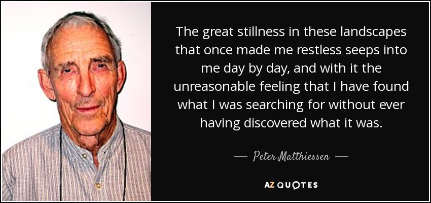 The great stillness in these landscapes that once made me restless seeps into me day by day, and with it the unreasonable feeling that I have found what I was searching for without ever having discovered what it was. - Peter Matthiessen