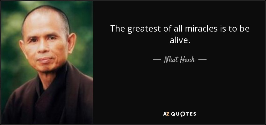 The greatest of all miracles is to be alive. - Nhat Hanh