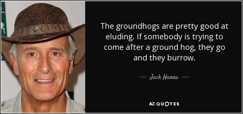 The groundhogs are pretty good at eluding. If somebody is trying to come after a ground hog, they go and they burrow. - Jack Hanna