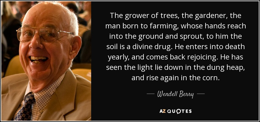 The grower of trees, the gardener, the man born to farming, whose hands reach into the ground and sprout, to him the soil is a divine drug. He enters into death yearly, and comes back rejoicing. He has seen the light lie down in the dung heap, and rise again in the corn. - Wendell Berry