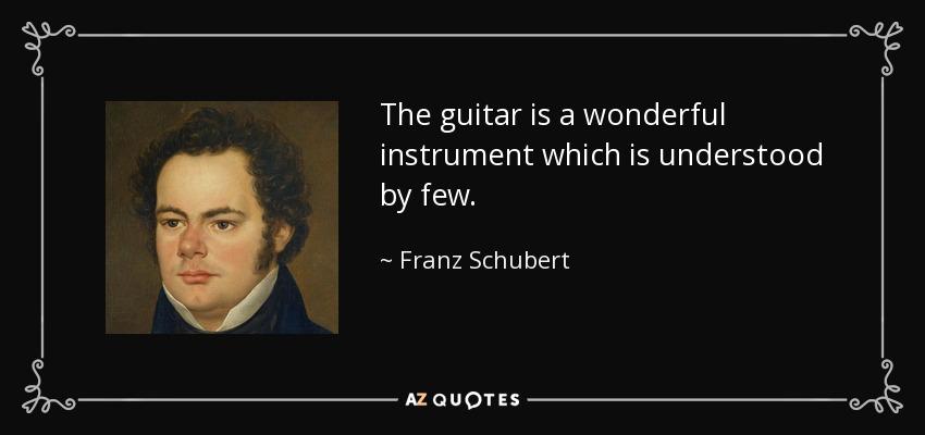 The guitar is a wonderful instrument which is understood by few. - Franz Schubert