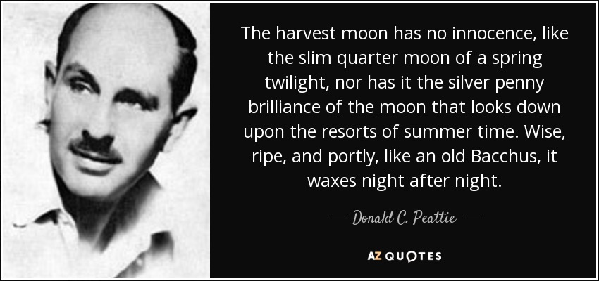 The harvest moon has no innocence, like the slim quarter moon of a spring twilight, nor has it the silver penny brilliance of the moon that looks down upon the resorts of summer time. Wise, ripe, and portly, like an old Bacchus, it waxes night after night. - Donald C. Peattie