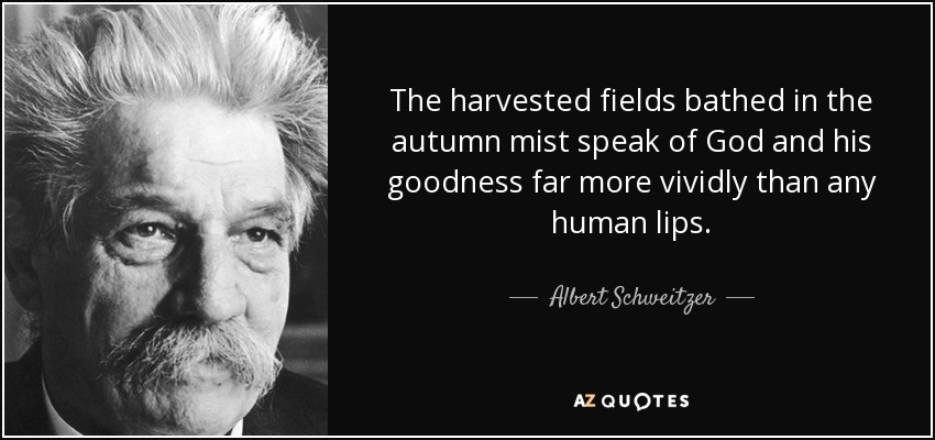 The harvested fields bathed in the autumn mist speak of God and his goodness far more vividly than any human lips. - Albert Schweitzer