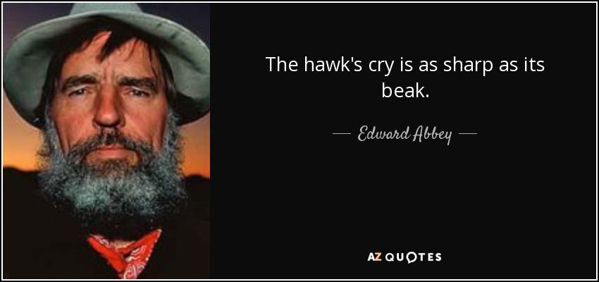 The hawk's cry is as sharp as its beak. - Edward Abbey