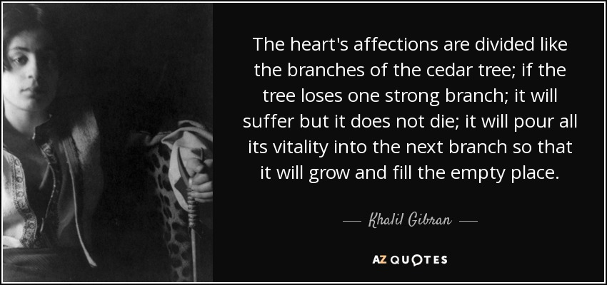 The heart's affections are divided like the branches of the cedar tree; if the tree loses one strong branch; it will suffer but it does not die; it will pour all its vitality into the next branch so that it will grow and fill the empty place. - Khalil Gibran