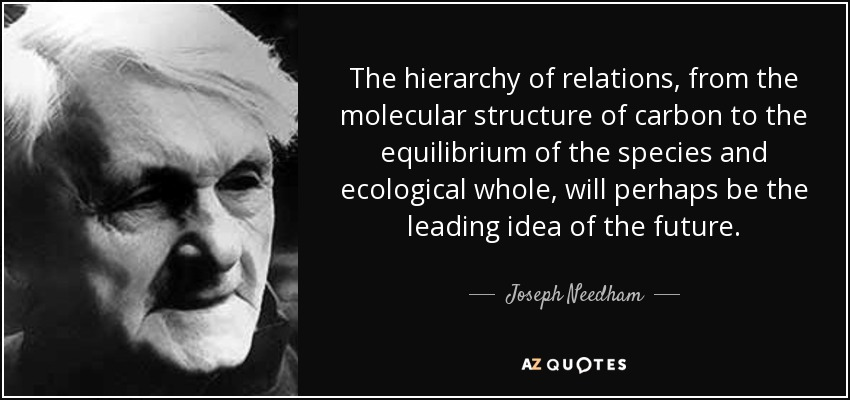 The hierarchy of relations, from the molecular structure of carbon to the equilibrium of the species and ecological whole, will perhaps be the leading idea of the future. - Joseph Needham