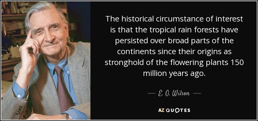 The historical circumstance of interest is that the tropical rain forests have persisted over broad parts of the continents since their origins as stronghold of the flowering plants 150 million years ago. - E. O. Wilson