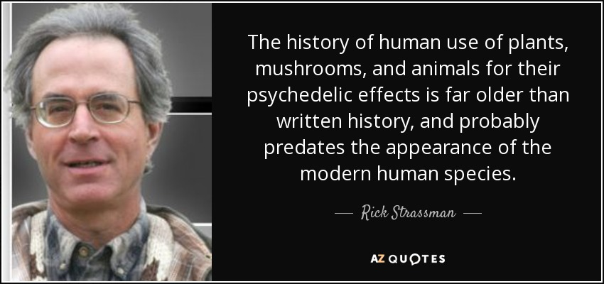 The history of human use of plants, mushrooms, and animals for their psychedelic effects is far older than written history, and probably predates the appearance of the modern human species. - Rick Strassman
