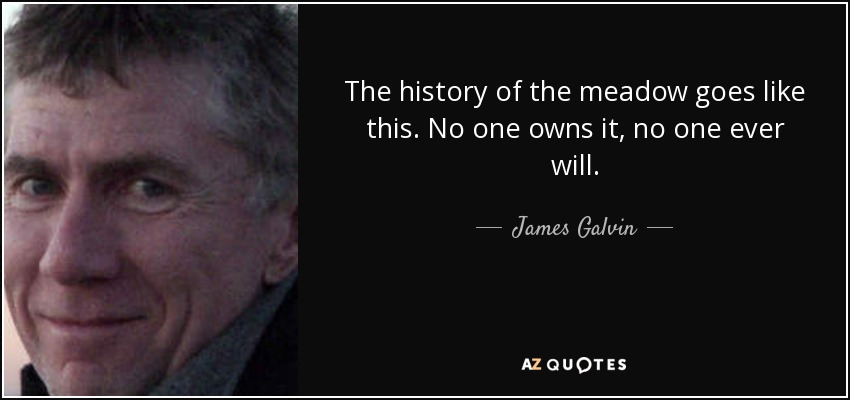 QUOTES BY JAMES GALVIN