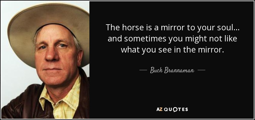 The horse is a mirror to your soul... and sometimes you might not like what you see in the mirror. - Buck Brannaman
