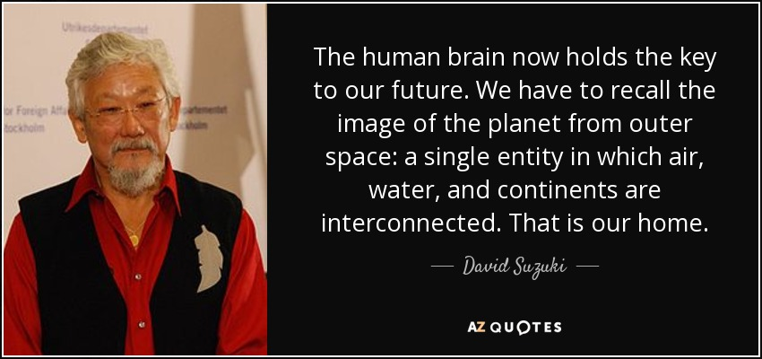 The human brain now holds the key to our future. We have to recall the image of the planet from outer space: a single entity in which air, water, and continents are interconnected. That is our home. - David Suzuki