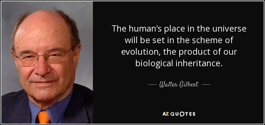 The human's place in the universe will be set in the scheme of evolution, the product of our biological inheritance. - Walter Gilbert