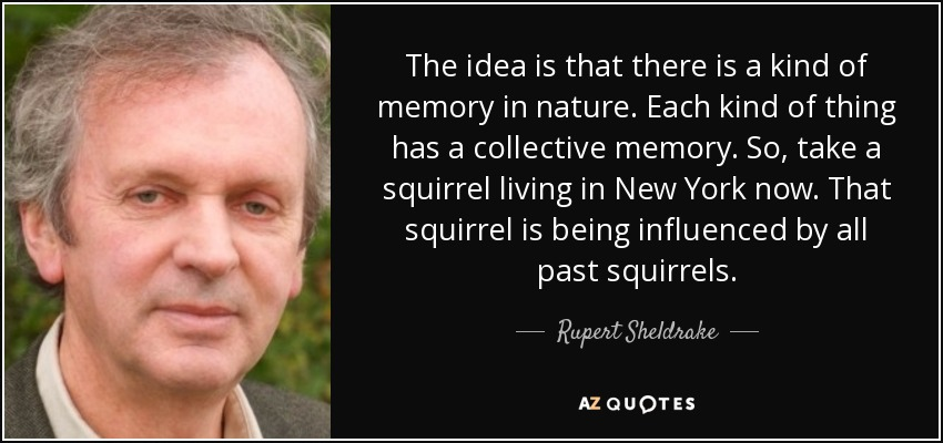 The idea is that there is a kind of memory in nature. Each kind of thing has a collective memory. So, take a squirrel living in New York now. That squirrel is being influenced by all past squirrels. - Rupert Sheldrake