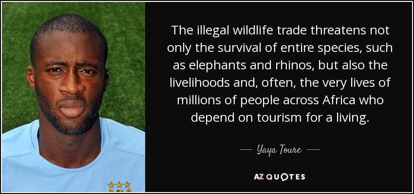 The illegal wildlife trade threatens not only the survival of entire species, such as elephants and rhinos, but also the livelihoods and, often, the very lives of millions of people across Africa who depend on tourism for a living. - Yaya Toure
