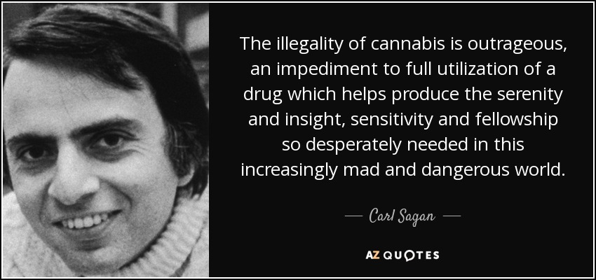 The illegality of cannabis is outrageous, an impediment to full utilization of a drug which helps produce the serenity and insight, sensitivity and fellowship so desperately needed in this increasingly mad and dangerous world. - Carl Sagan