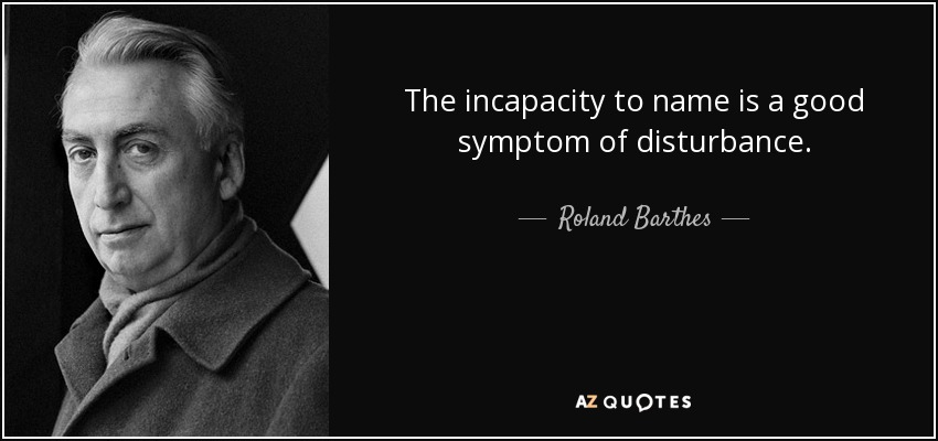 The incapacity to name is a good symptom of disturbance. - Roland Barthes