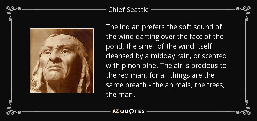The Indian prefers the soft sound of the wind darting over the face of the pond, the smell of the wind itself cleansed by a midday rain, or scented with pinon pine. The air is precious to the red man, for all things are the same breath - the animals, the trees, the man. - Chief Seattle