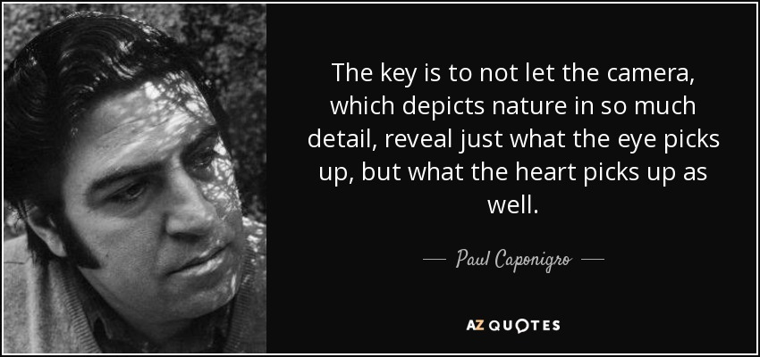 The key is to not let the camera, which depicts nature in so much detail, reveal just what the eye picks up, but what the heart picks up as well. - Paul Caponigro