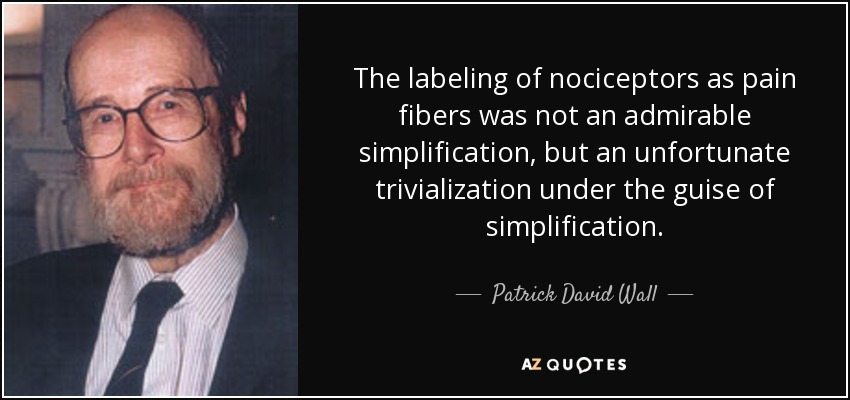 The labeling of nociceptors as pain fibers was not an admirable simplification, but an unfortunate trivialization under the guise of simplification. - Patrick David Wall