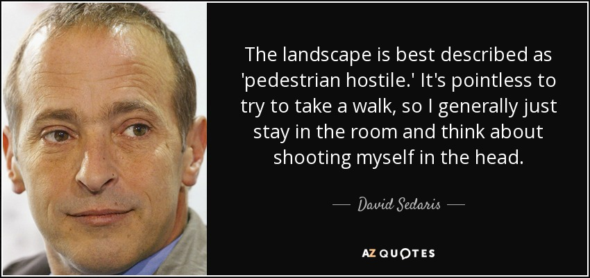The landscape is best described as 'pedestrian hostile.' It's pointless to try to take a walk, so I generally just stay in the room and think about shooting myself in the head. - David Sedaris