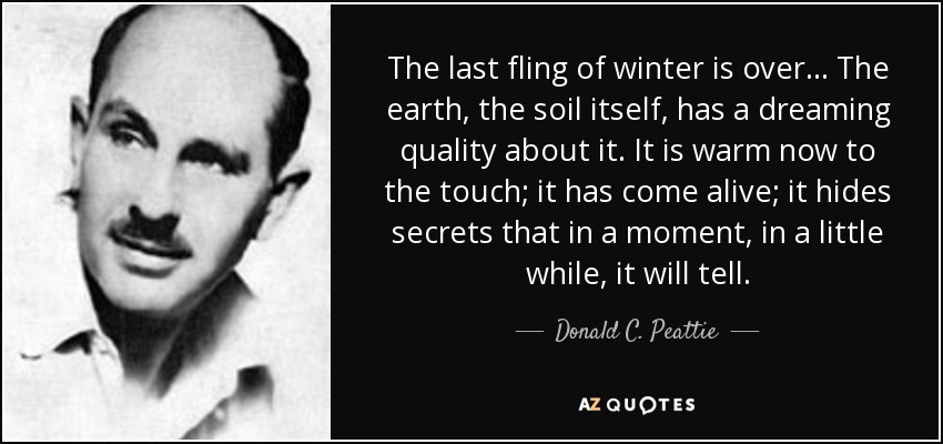 The last fling of winter is over ... The earth, the soil itself, has a dreaming quality about it. It is warm now to the touch; it has come alive; it hides secrets that in a moment, in a little while, it will tell. - Donald C. Peattie
