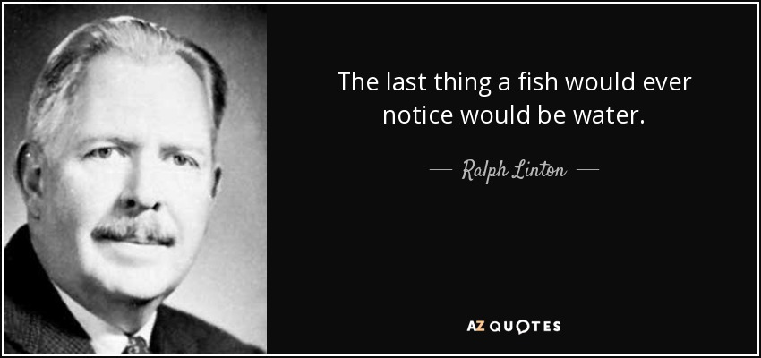 The last thing a fish would ever notice would be water. - Ralph Linton