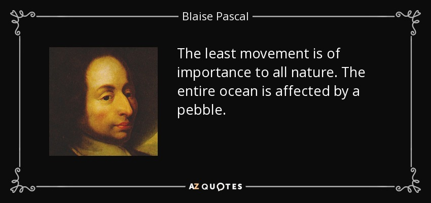The least movement is of importance to all nature. The entire ocean is affected by a pebble. - Blaise Pascal