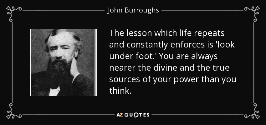 The lesson which life repeats and constantly enforces is 'look under foot.' You are always nearer the divine and the true sources of your power than you think. - John Burroughs