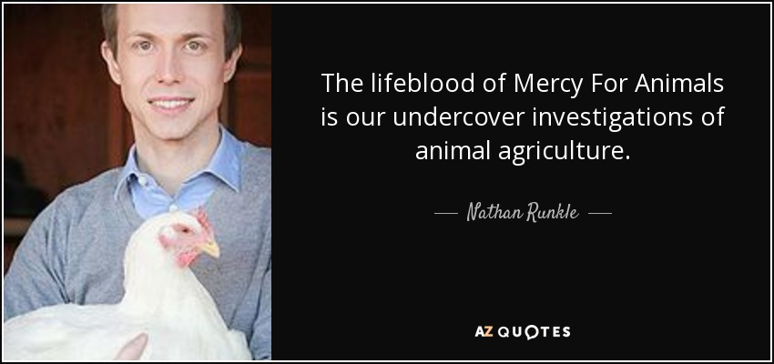 The lifeblood of Mercy For Animals is our undercover investigations of animal agriculture. - Nathan Runkle