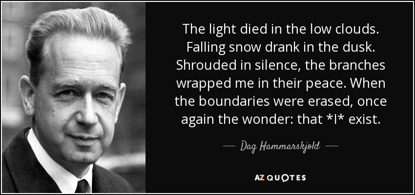 The light died in the low clouds. Falling snow drank in the dusk. Shrouded in silence, the branches wrapped me in their peace. When the boundaries were erased, once again the wonder: that *I* exist. - Dag Hammarskjold