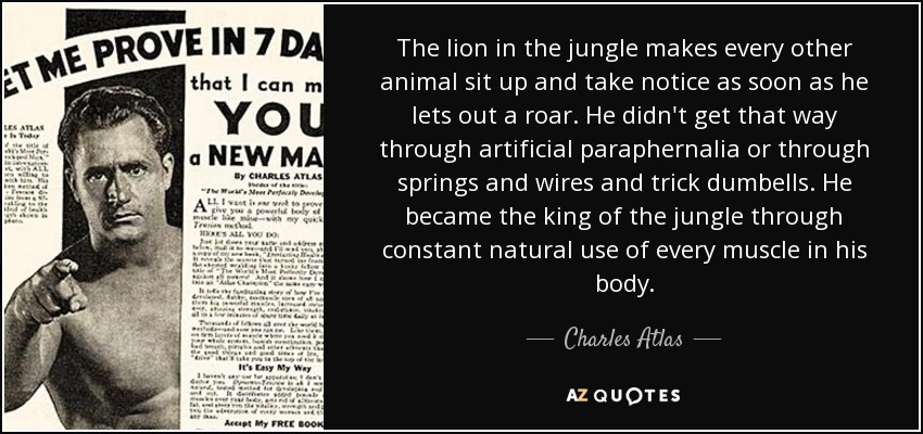 The lion in the jungle makes every other animal sit up and take notice as soon as he lets out a roar. He didn't get that way through artificial paraphernalia or through springs and wires and trick dumbells. He became the king of the jungle through constant natural use of every muscle in his body. - Charles Atlas