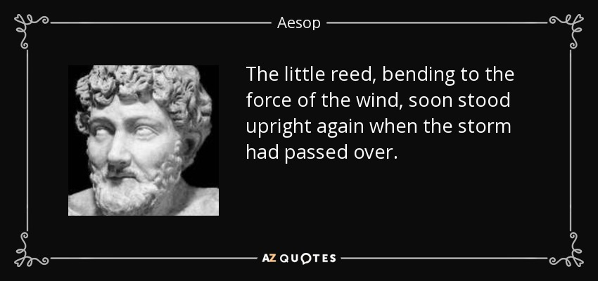 The little reed, bending to the force of the wind, soon stood upright again when the storm had passed over. - Aesop