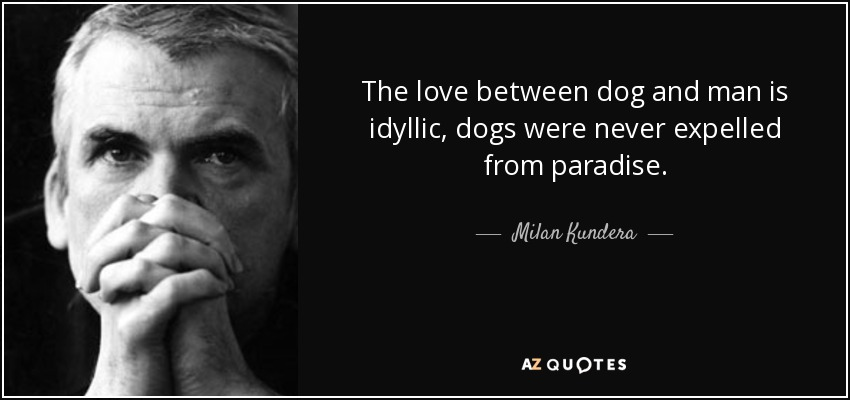 The love between dog and man is idyllic, dogs were never expelled from paradise. - Milan Kundera
