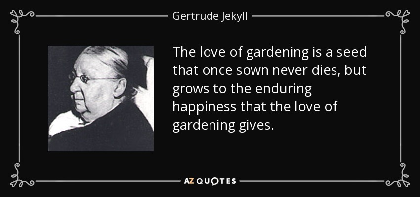 The love of gardening is a seed that once sown never dies, but grows to the enduring happiness that the love of gardening gives. - Gertrude Jekyll