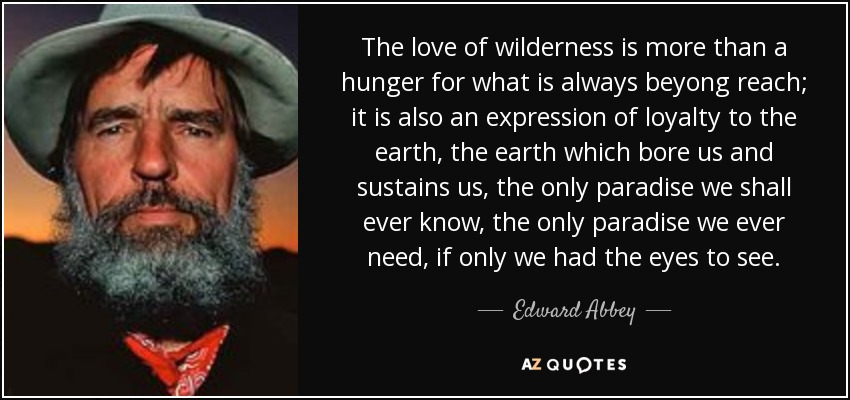 The love of wilderness is more than a hunger for what is always beyong reach; it is also an expression of loyalty to the earth, the earth which bore us and sustains us, the only paradise we shall ever know, the only paradise we ever need, if only we had the eyes to see. - Edward Abbey