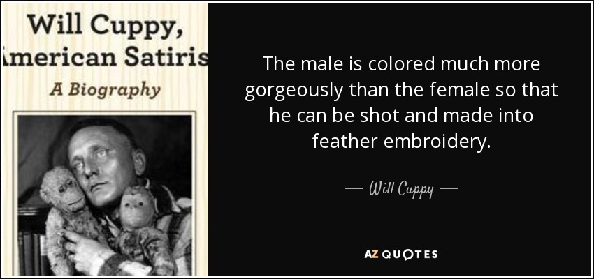 The male is colored much more gorgeously than the female so that he can be shot and made into feather embroidery. - Will Cuppy
