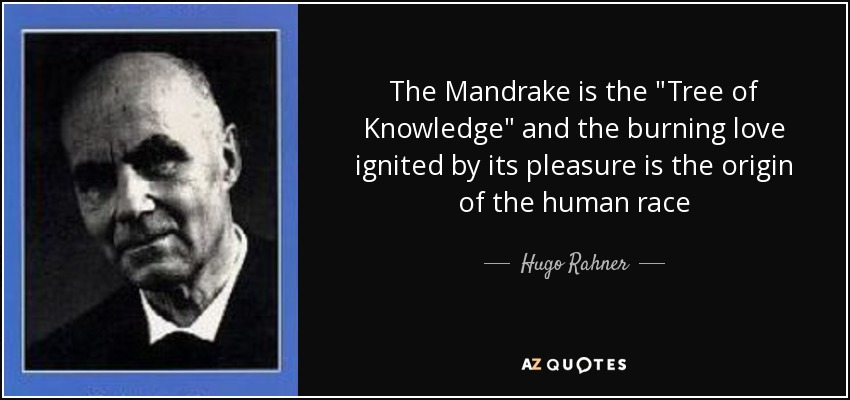 QUOTES BY HUGO RAHNER  A-Z Quotes