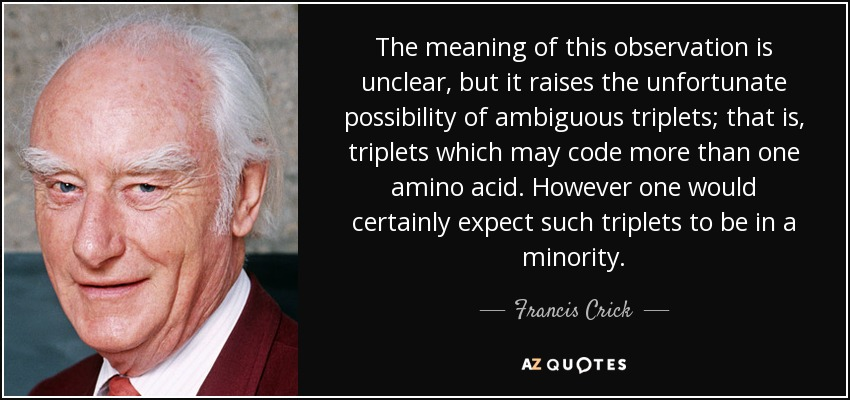 The meaning of this observation is unclear, but it raises the unfortunate possibility of ambiguous triplets; that is, triplets which may code more than one amino acid. However one would certainly expect such triplets to be in a minority. - Francis Crick
