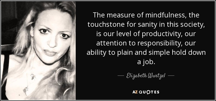 The measure of mindfulness, the touchstone for sanity in this society, is our level of productivity, our attention to responsibility, our ability to plain and simple hold down a job. - Elizabeth Wurtzel