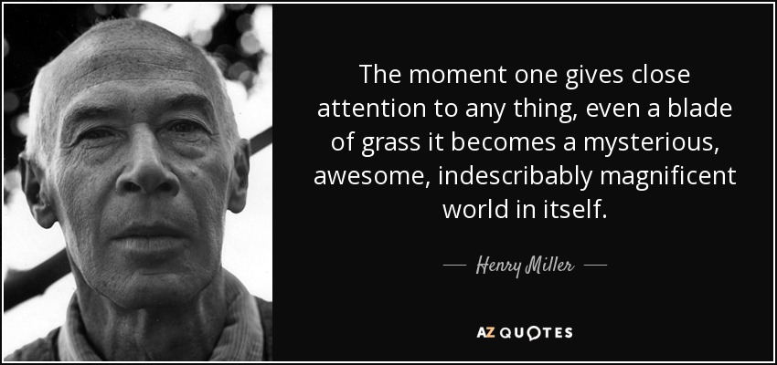 The moment one gives close attention to any thing, even a blade of grass it becomes a mysterious, awesome, indescribably magnificent world in itself. - Henry Miller