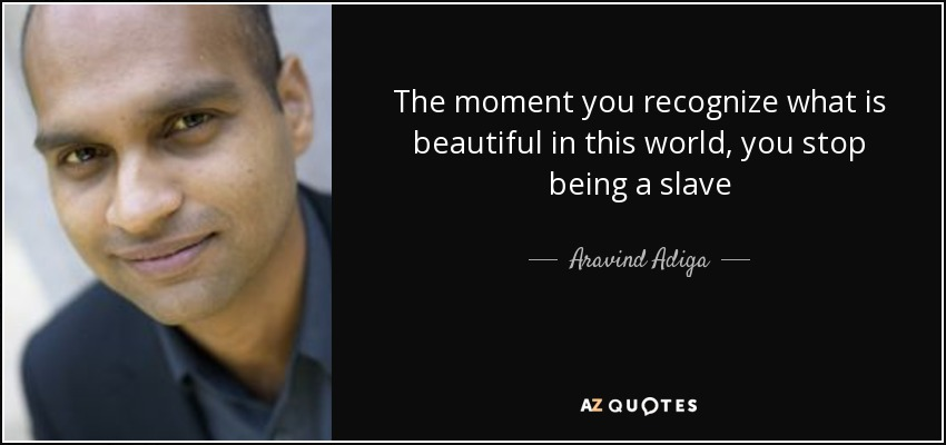 The moment you recognize what is beautiful in this world, you stop being a slave - Aravind Adiga