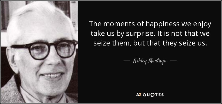 The moments of happiness we enjoy take us by surprise. It is not that we seize them, but that they seize us. - Ashley Montagu