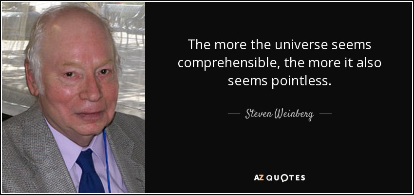 The more the universe seems comprehensible, the more it also seems pointless. - Steven Weinberg