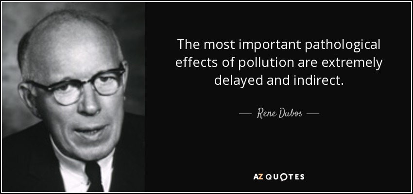 The most important pathological effects of pollution are extremely delayed and indirect. - Rene Dubos
